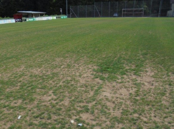 wassermanagement 01 trockenschaeden sportrasen